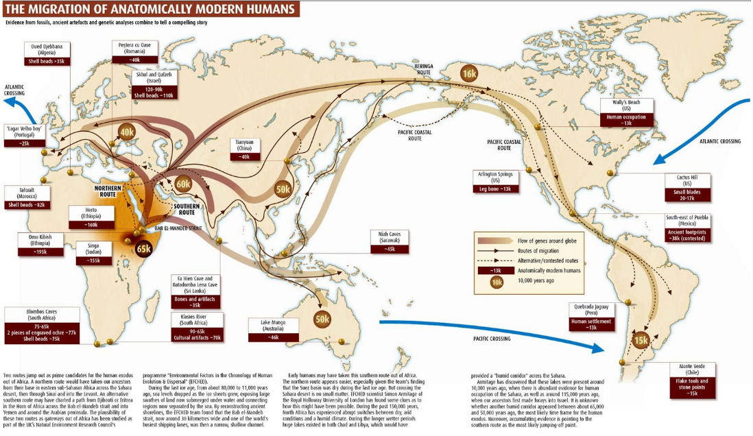 Penyebaran Manusia Modern ke Indonesia