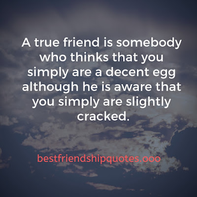 Surprise Friendship Quotes