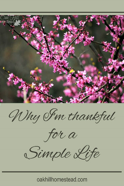 Why I'm thankful for a simple life, and how you can create one of your own.