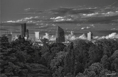 """The new skyline of Milan"" - 2015 © Fabrizio Capsoni"