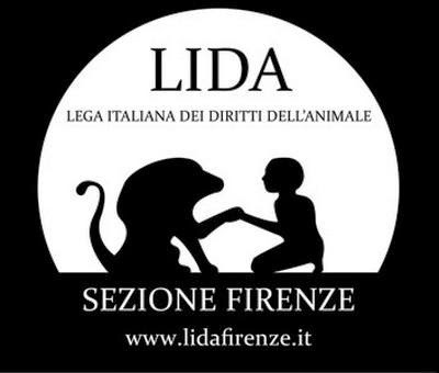 http://www.lidafirenze.it/