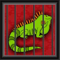Games2Jolly - Green Iguana Rescue Escape
