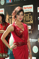 Videesha in Spicy Floor Length Red Sleeveless Gown at IIFA Utsavam Awards 2017  Day 2  Exclusive 06.JPG