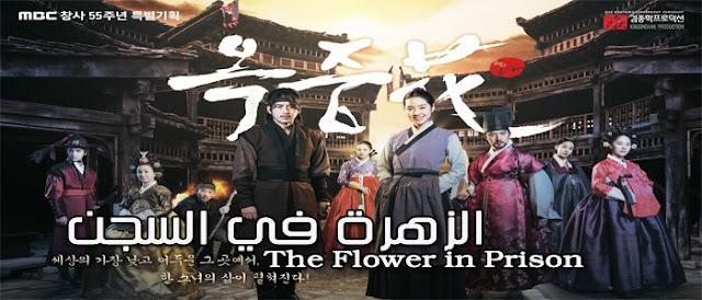 حلقات مسلسل الزهرة في السجن The Flower in Prison Episodes مترجمة