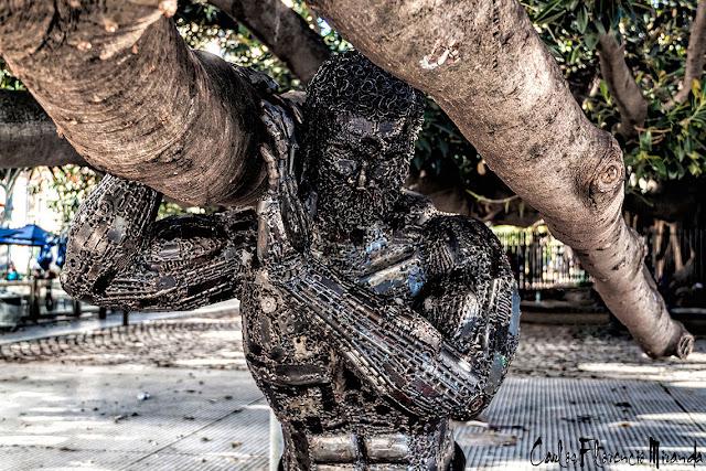 Escultura que sostiene las ramas del gomero mas antiguo.