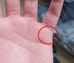 Which Hand To Read For Female In Palmistry For Marriage In Palmistry