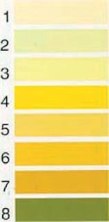 Urine Colour Measurement