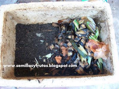 humus de lombriz comun de jardin
