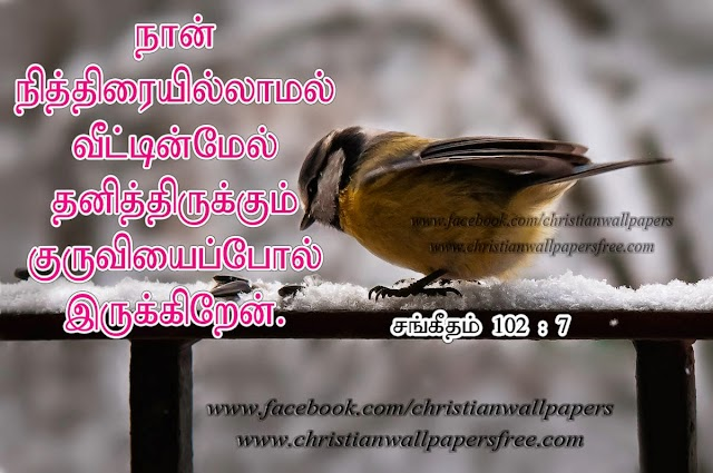 I am alone tamil bible verse wallpaper