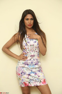 Nishi Ganda stunning cute in Flower Print short dress at Tick Tack Movie Press Meet March 2017 041.JPG