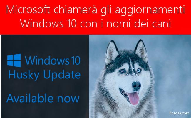 Microsof chiama gli aggiornamenti di Windows 10 con i nomi dei cani