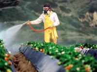 bersifat racun dan bioaktif yang digunakan untuk membunuh atau mengendalikan berbagai ham Pengertian, Formulasi dan Jenis-jenis Pestisida