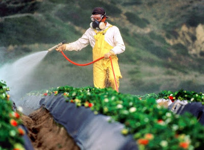 Pengertian, Formulasi dan Jenis-jenis Pestisida