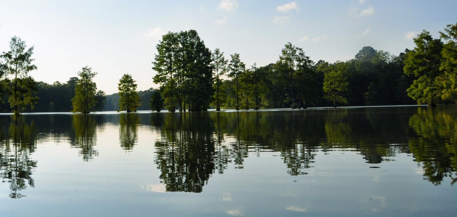 MidAtlantic DayTrips: Reflections on Trap Pond