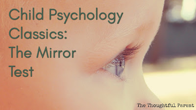 Child Psychology Classics: The Mirror Test