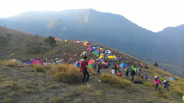 Gunung Papandayan Guntur Dan Cikuray Diserbu Ribuan Pendaki