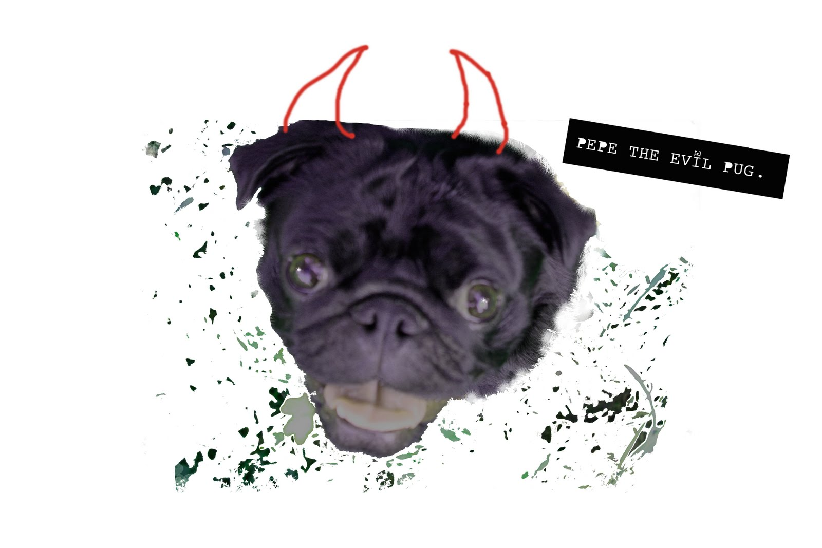 Melissa Price Pepe The Evil Pug