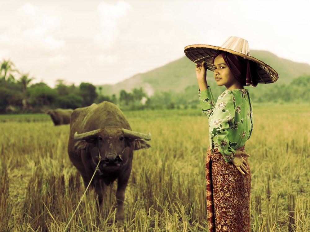 Lingkungan Hijau, Baik untuk Tumbuh-Kembang Anak