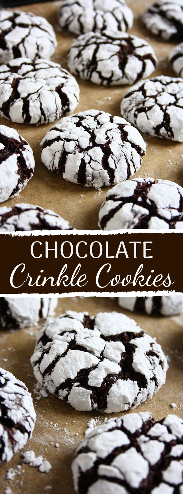 Chocolate Crinkle Cookies #holidaydesert #chocolate