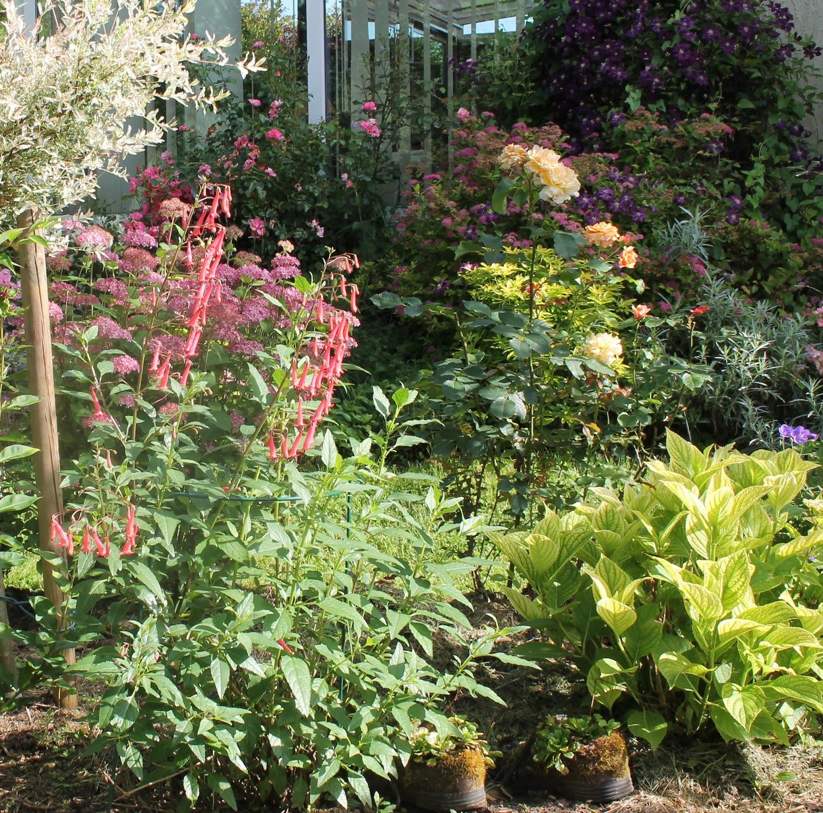 Doubs jardin petit tour au jardin 1 for Le jardin high wine