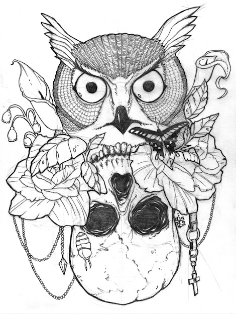 Owl And Sugar Skull Drawing