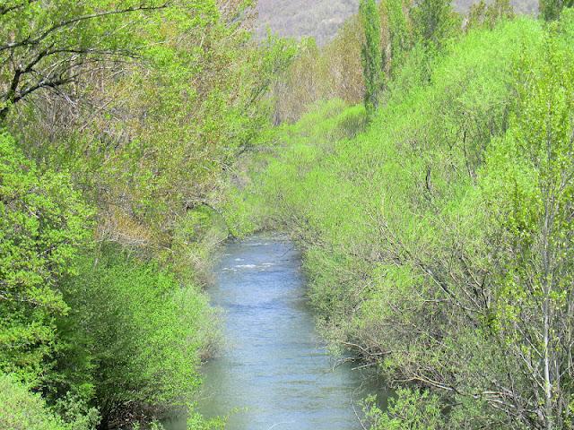El río Torío, uno de los vertebradores naturales de la reserva