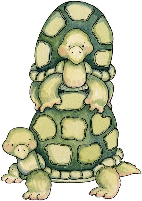 tortugas dibujo