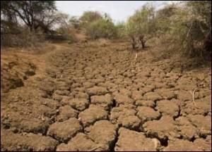 le Maroc prie pour la pluie