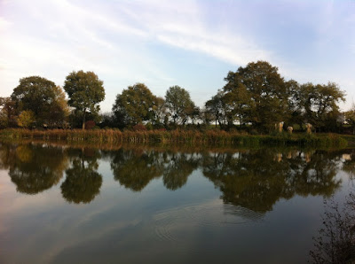 trees reflecting on the Etang du Bois Guenand near Charnizay
