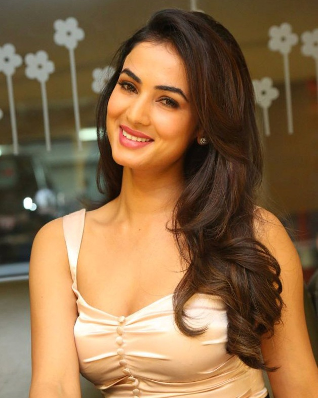 Sonal Chauhan To Play A Rajput In Paltan