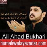 https://www.humaliwalyazadar.com/2018/10/ali-ahad-bukhari-nohay-2019.html