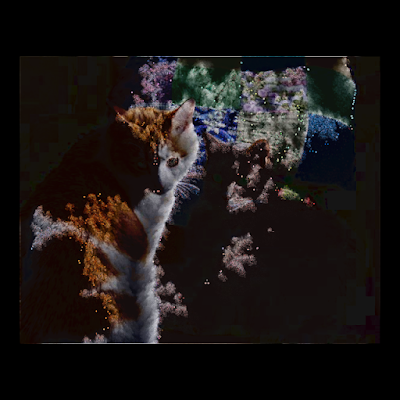 Applying Conway's Game of Life to photo images.