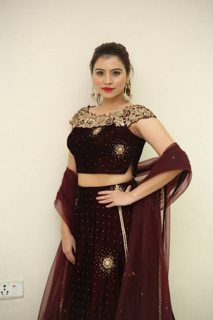 Priyanka Raman Saakshyam Movie Audio Launch Stills