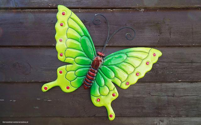 Achtergrond met een ijzeren groen gele vlinder