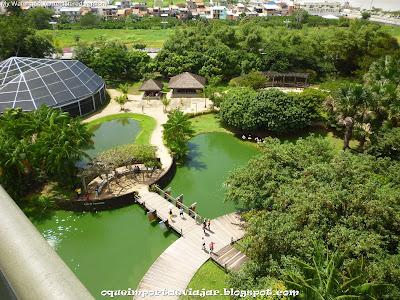 Mangal das Garças - Belém - Pará