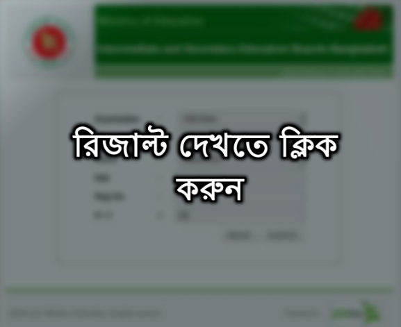 Alim And HSC Result 2017