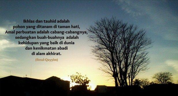 Al-Anwar- Hikmah, Hakikat Teman Sejati