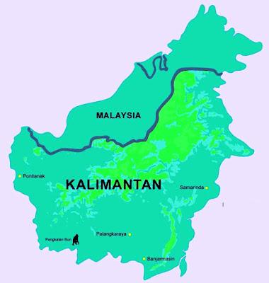 Investasi Sarang Burung Walet Di  Kalimantan