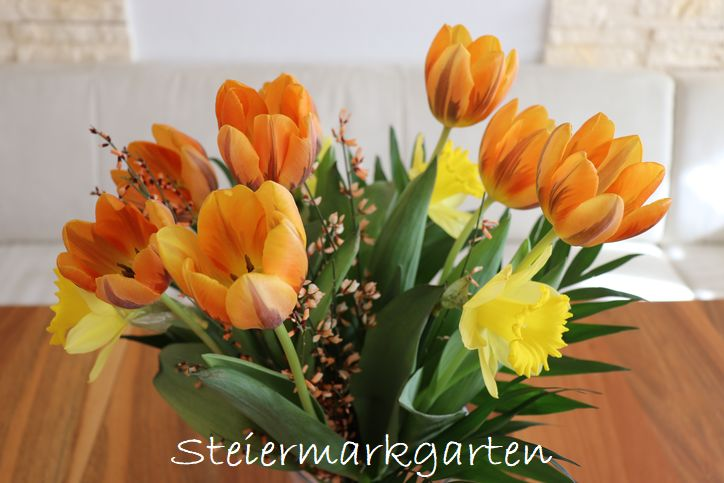 Frühlingsstrauß-Steiermarkgarten