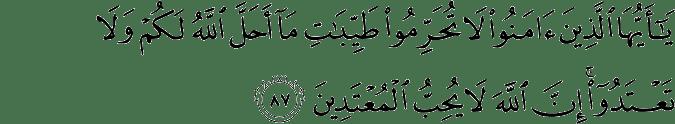 Surat Al-Maidah Ayat 87