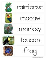 Rainforest printables and more 1111 i am gathering a wide collection of free printables within certain themes in order to better organize these online i have created theme blog posts for the ibookread PDF