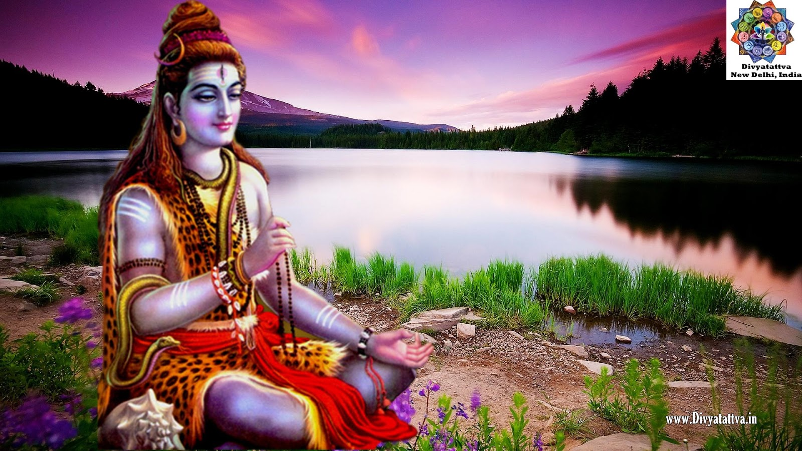 Shiva Lord Wallpapers Desktop Hd Wallpapers: Divyatattva Astrology Free Horoscopes Psychic Tarot Yoga