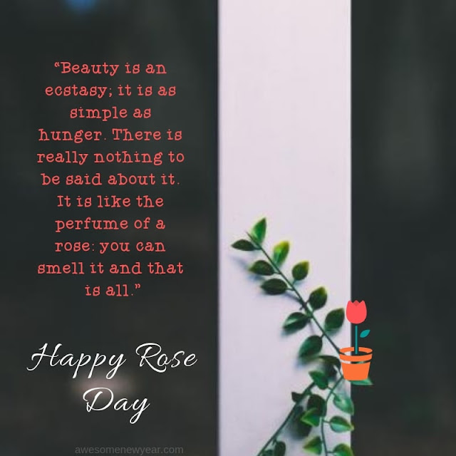 lovely Rose Day Quotes