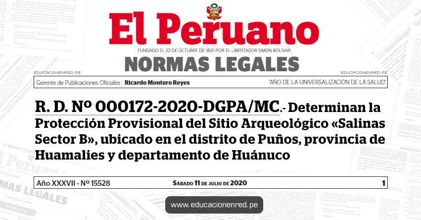 R. D. Nº 000172-2020-DGPA/MC.- Determinan la Protección Provisional del Sitio Arqueológico «Salinas Sector B», ubicado en el distrito de Puños, provincia de Huamalies y departamento de Huánuco