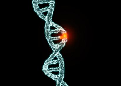 Đột biến gen là nguồn gốc của Tăng tiểu cầu nguyên phát.