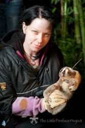 Support prof. Anna Nekaris to save Slow Loris