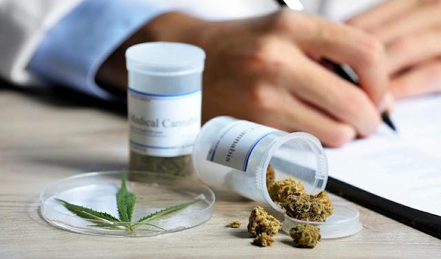 El Senado debatirá hoy el proyecto para autorizar el uso de cannabis medicinal