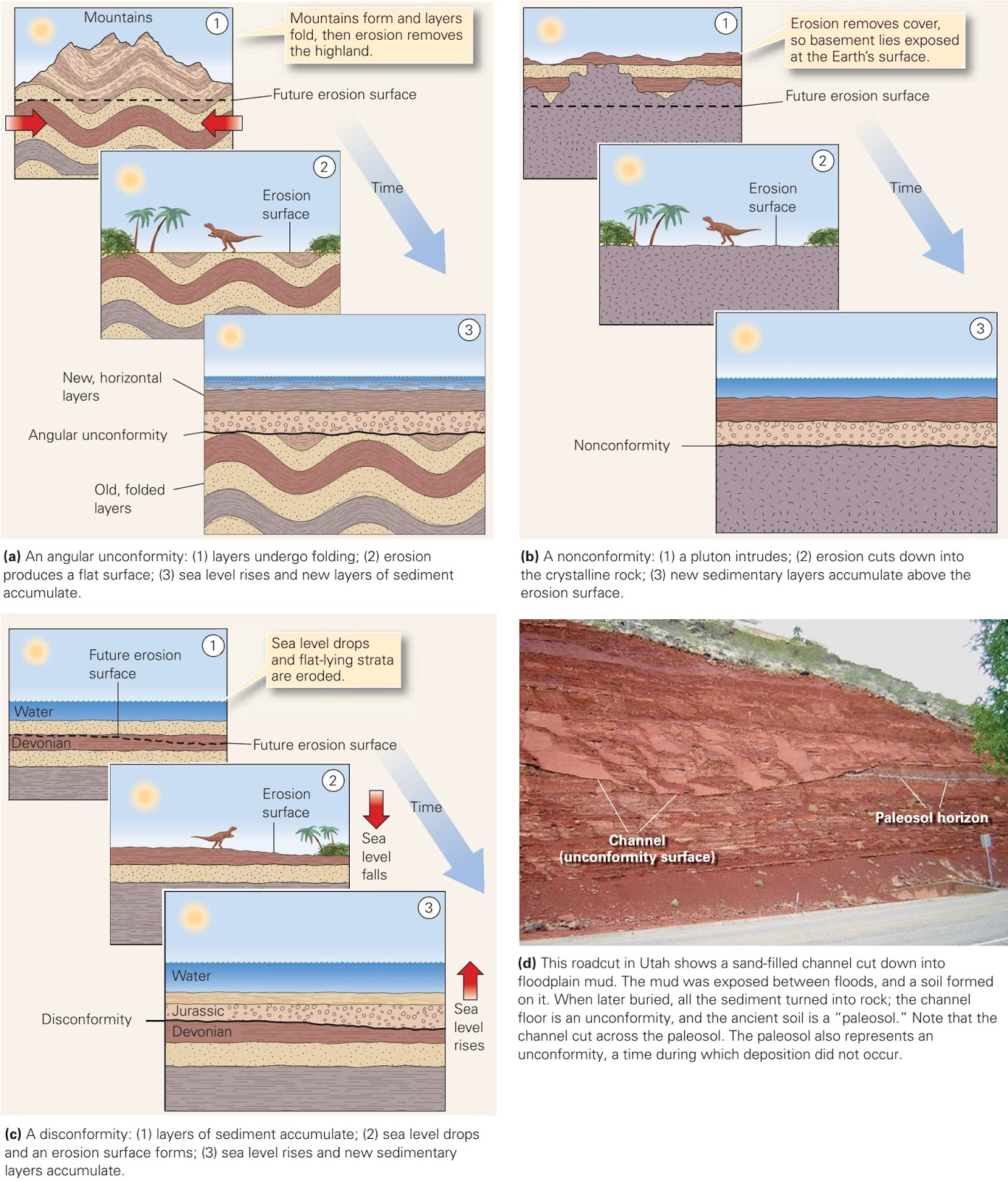 Unconformities Gaps In The Record Learning Geology