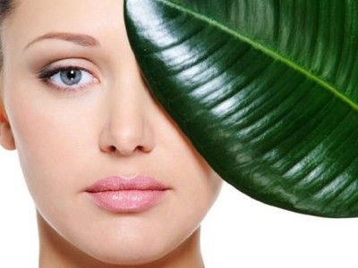 Reasons Why You Should Just Utilize Natural Skin Cream