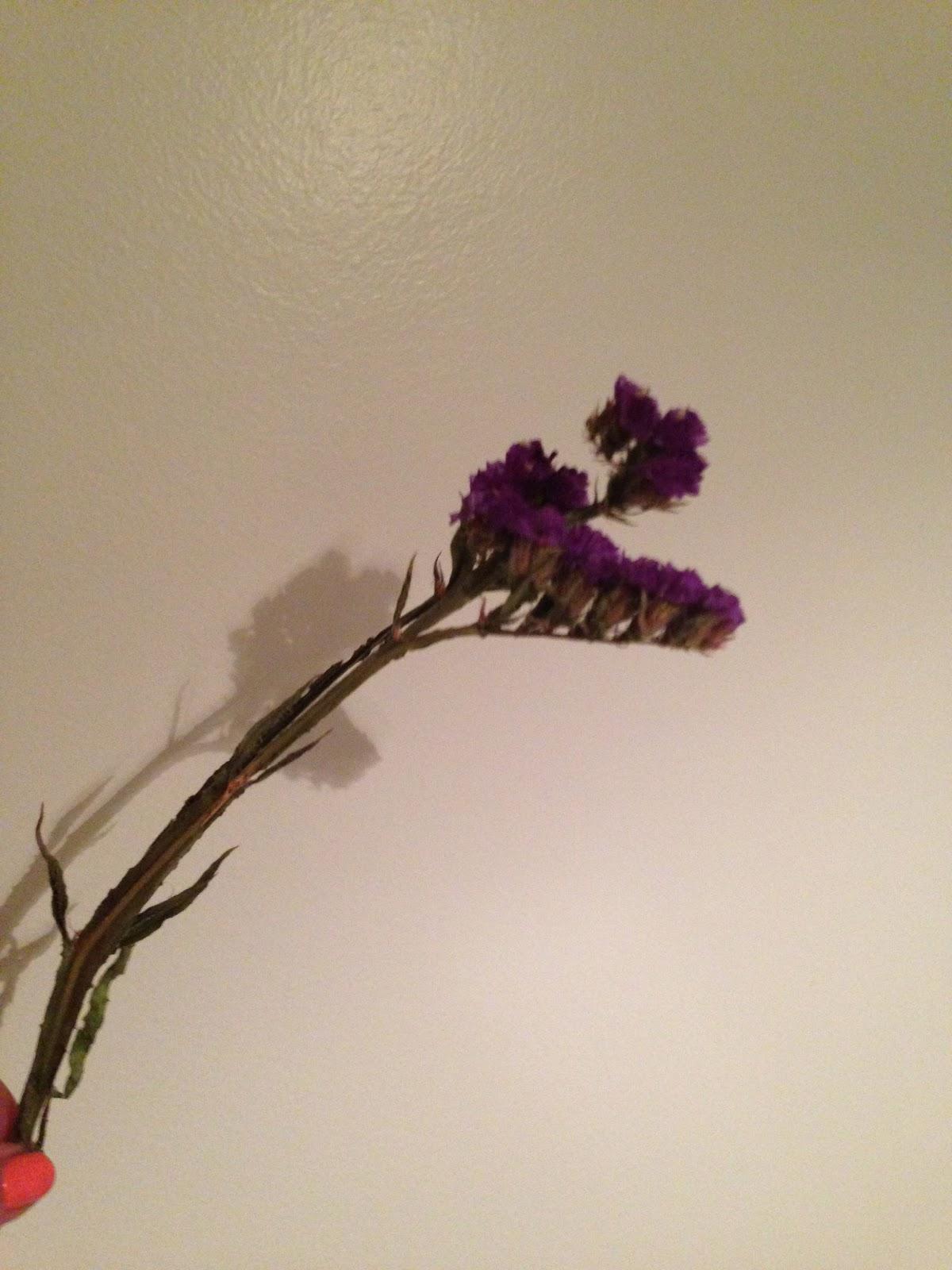 LA MECCA: DIY: Make flowers last forever